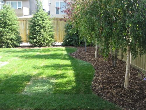 Дизайн заднего дворика на даче. Планировка заднего двора
