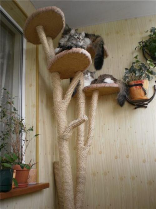 Домашнее дерево для кошек своими руками