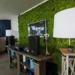 Вертикальное озеленение в квартире.