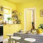 Отделка стен на кухне: функциональное разделение помещения и используемые для этих целей материалы.