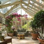 Зимний сад.  Рай для ботаников или стиль жизни?