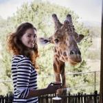Jamala Wildlife Lodge - необычный отель в зоопарке, Австралия!