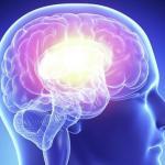 Ни для кого ни секрет, что наш мозг нуждается в постоянной тренировке, чтобы быть в тонусе.
