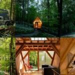 Небольшой дом - трейлер в британском лесу.