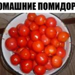 Домашние помидоры. Несмотря на то, что помидоры теплолюбивы - они могут хорошо расти и давать урожай даже в зимние морозы.